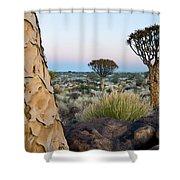 Quiver Tree Aloe Dichotoma, Quiver Tree Shower Curtain