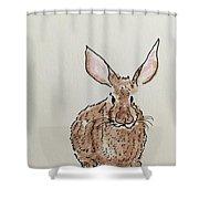 Rabbit 4 Shower Curtain