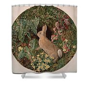 Rabbit Amid Ferns And Flowering Shower Curtain