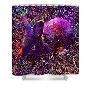 Rabbit Animal Baby Rabbit Bunny  Shower Curtain