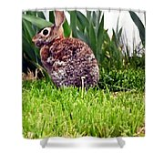 Rabbit As A Painting Shower Curtain
