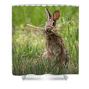 Rabbit Collector Square Shower Curtain