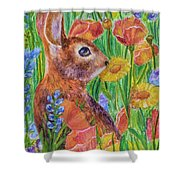 Rabbit In Meadow Shower Curtain