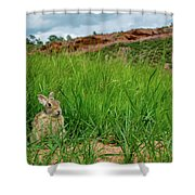 Rabbit In The Grass Shower Curtain