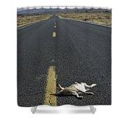 Rabbit Road Kill Shower Curtain