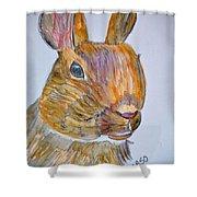 Rabbit Watercolor 15-01 Shower Curtain