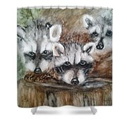 Raccoon Babies By Christine Lites Shower Curtain