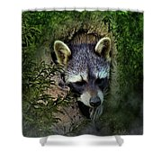 Raccoon In A Log Shower Curtain