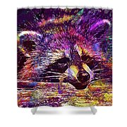 Raccoon Wild Animal Furry Mammal  Shower Curtain