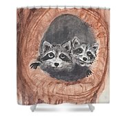 Raccoons Shower Curtain