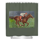 Race Horse Big Brown Shower Curtain