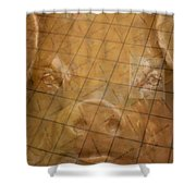 Rachael And The Market Tiles Shower Curtain