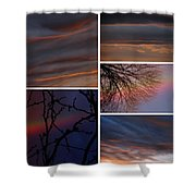 Racing Digital Thoughts, V. IIi  Shower Curtain