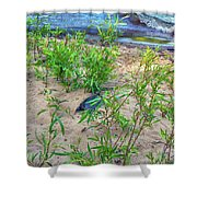 Racing To The Edge Shower Curtain