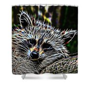 Racoon Fractal Shower Curtain