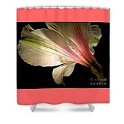 Radiance Of Hope Shower Curtain
