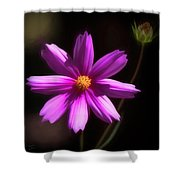 Radiant Cosmos Shower Curtain