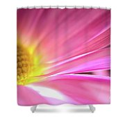 Radiant Glory Shower Curtain