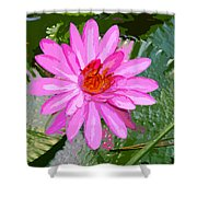 Radiant Pink Shower Curtain