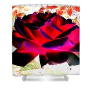 Radiant Red Rose Shower Curtain