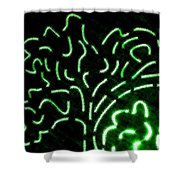 Radiant Trees Abstract  Shower Curtain
