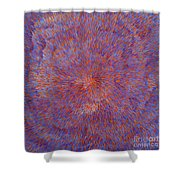 Radiation With Blue And Red  Shower Curtain