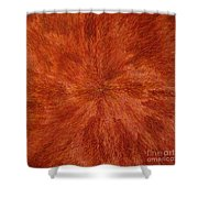 Radiation With Brown Yellow And Voilet Shower Curtain