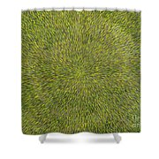 Radiation With Green With Yellow Shower Curtain