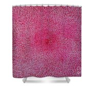 Radiation With Pink And Magenta  Shower Curtain