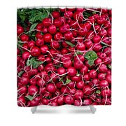 Radishes Shower Curtain