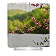 Radner Lake During The Spring Shower Curtain