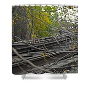 Rail Overgrowth Shower Curtain