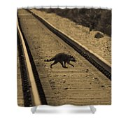 Railroad Bandit Shower Curtain