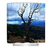 Rain Column Tree Shower Curtain