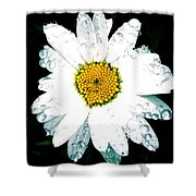 Rain Daisy  Shower Curtain
