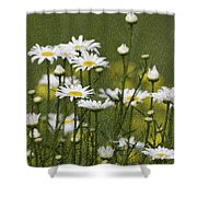 Rain Drops On Daisies Shower Curtain