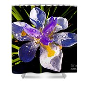 Rain Flower Morning Shower Curtain