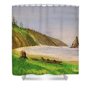 Rain Forest Meets The Sea Shower Curtain