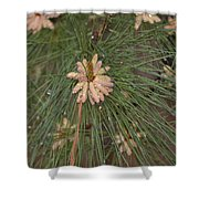 Rain N Flower Shower Curtain