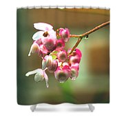 Rain On Flowers Shower Curtain