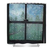 Rain On The Window Shower Curtain