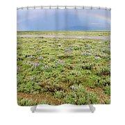 Rainbow And Lupine, Grand Teton Nm, Wyoming Shower Curtain