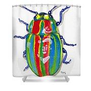 Rainbow Bug Shower Curtain