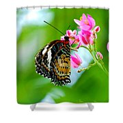 Rainbow Butterfly Shower Curtain