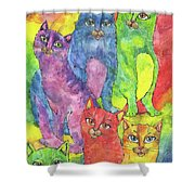 Rainbow Cats 2017 07 01 Shower Curtain