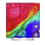 Rainbow Coaster  Shower Curtain
