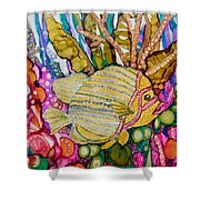 Rainbow-colored Sunfish Shower Curtain