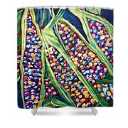 Rainbow Corn Shower Curtain