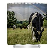 Rainbow Cow Shower Curtain