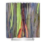 Rainbow Eucalyptus 13 Shower Curtain